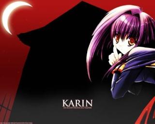 http://hetina.cowblog.fr/images/Categoriesterimnees/K/karinchibivampire/karin210.jpg
